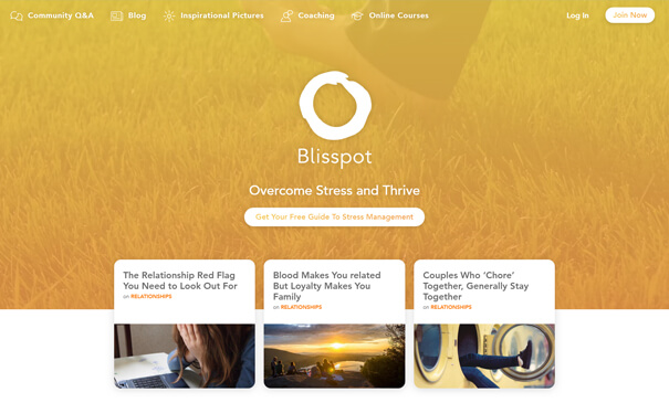 Blisspot - PSD design to SocialEngine theme