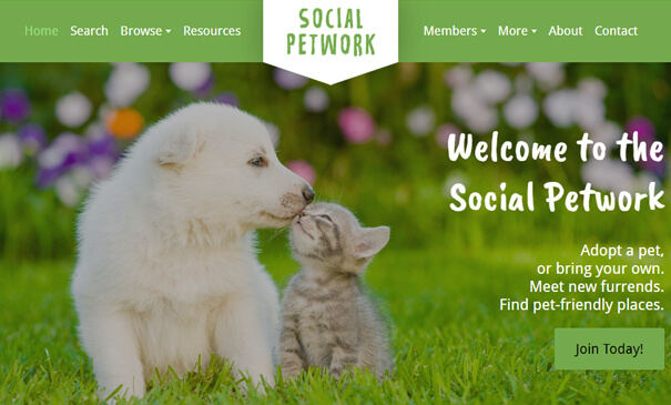 SocialPetwork - PSD design to SocialEngine theme
